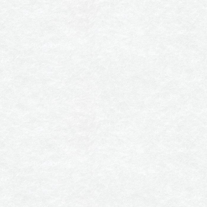 Próbka koloru filcu dekoracyjnego EcoFelt w kolorze białym o symbolu AF-39